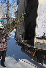 Тысячи елок сдали в Хабаровском крае в зооцентры