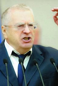 Жириновский призвал наказать Навального: «Надо отправить туда, где тундра, где птицы на лету замерзают и падают на землю»
