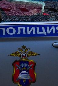 Три человека погибли в ДТП с грузовиком в Подмосковье
