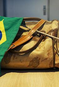 Россиянин пытался вывезти из Бразилии в багаже и ручной клади более двухсот животных