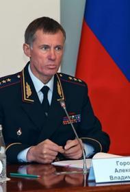 МВД России готовится к охране правопорядка на несанкционированных митингах