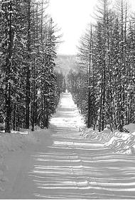 В Хабаровском крае открыли «зимник» Аян – Нелькан