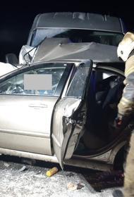 В ДТП на дороге-обходе Оренбурга в районе поселка Заречье погибли три человека