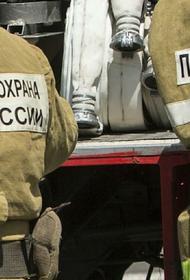 Два человека погибли при пожаре в петербургской квартире