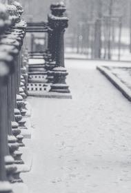 МЧС предупредило московских пешеходов и водителей о тумане и гололедице