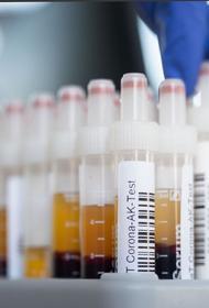 В США за сутки выявили 186,8 тысячи случаев заражения COVID-19
