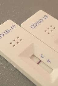 В России за сутки скончались 559 пациентов с COVID-19