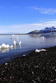 Арктические проекты загрузят работой тысячи российских предприятий, но нельзя забывать об экологии и о людях