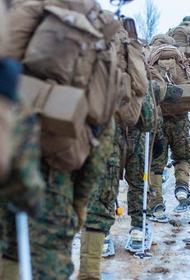 Пандемия мешает НАТО вести подготовку войск для боевых действий против России в Арктике