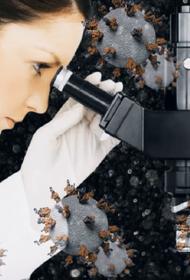 Ученые из Огайо считают, что распространение COVID-19 может остановить анализ комнатной пыли