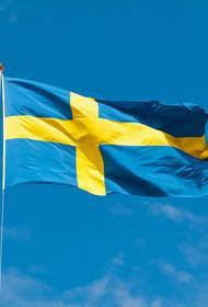 Шведский депутат Нордберг поднял вопрос о мерах поддержания «демократии на Украине»