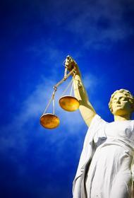 Пресненский суд арестовал подравшегося с силовиками чеченца