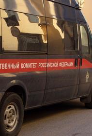 СК РФ опубликовал видео допроса подравшегося с силовиками чеченца