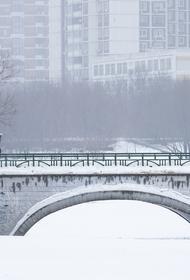 За два дня в Москве выпало около пяти сантиметров снега