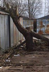 В Хабаровске ищут неизвестного, пристававшего к детям