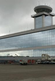 Десятки рейсов задержаны и отменены в аэропортах Москвы