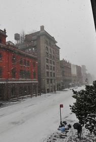 В Нью-Йорке в преддверии снежной бури введено чрезвычайное положение, отменено большинство рейсов