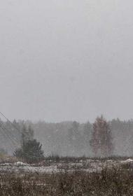Для чего Минобороны разворачивает в Сибири и на Урале комплекс РЭБ «Поле-21»?