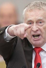 Жириновский заявил, что Навального следовало бы посадить в совокупности «лет на 15-20»
