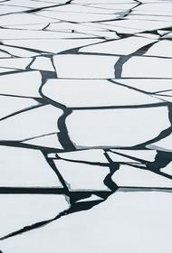 Трое детей провалились под лед на пруду в Нижегородской области