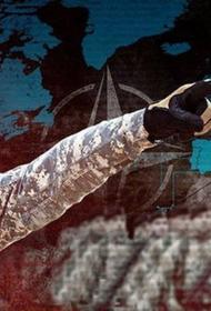 ТК «Царьград»: НАТО рассматривают вопрос о нападении на Калининград и Крым