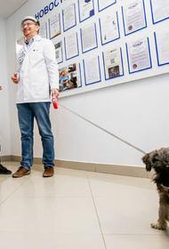 Ростовский вуз можно посещать с животными