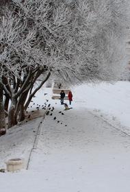 Хабаровских школьников вновь отправили на удаленку