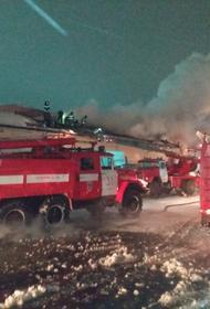 МЧС: Пожару на продуктовом складе в Омске присвоен повышенный уровень сложности