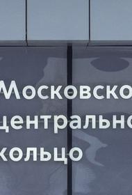 На станции МЦК «Андроновка» человек упал на рельсы