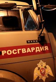 Росгвардия приложит все усилия для расследования убийства Абакара Капланова в РОВД в Махачкале