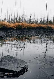 Ханты-Мансийское экологическое бедствие