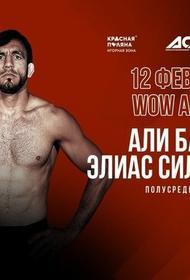 На Красной Поляне пройдёт турнир MMA