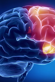 Учёные научились прогнозировать возникновение болезни Альцгеймера