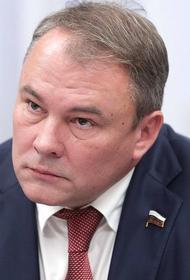 Зампред Госдумы считает призывы к санкциям изменой родине