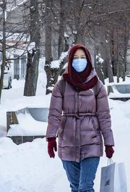 Эпидемиолог Пшеничная оценила вероятность возникновения третьей волны COVID-19 в России