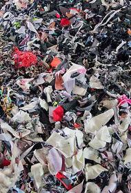 Бесплатный обмен одеждой может спасти экологию