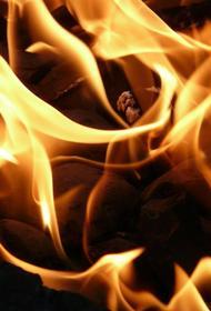 В Подмосковье в Малаховке  произошел  пожар на складе с лакокрасочными материалами и баллонами с газом