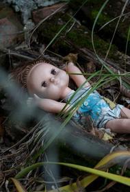 История с подмененными куклами детьми — выдумка. Губернатор Ставропольского края назвал виновника инсценировки