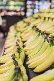 В некоторых российских магазинах с прилавков могут временно исчезнуть бананы