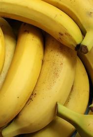 В АКОРТ оценили ситуацию с импортом бананов