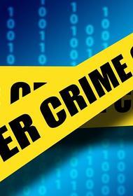 Названы самые распространённые виды мошенничества в сети