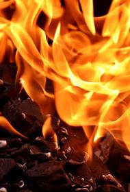 Пожар произошёл в ТЦ «Самшит», который находится на рынке в Адлерском районе Сочи