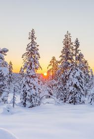 В Калужской области объявлено об аномально холодной погоде с 14 по 18 февраля