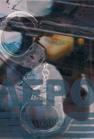 Экс-руководители предприятия, входящего в структуру «Росатома», арестованы за хищение 209 миллионов рублей