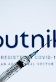 Президент Сербии Вучич выразил России благодарность за поставки вакцины «Спутник V»