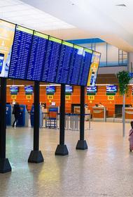 Сергунина: в дьюти-фри аэропорта Шереметьево появятся товары под брендом Made in Moscow