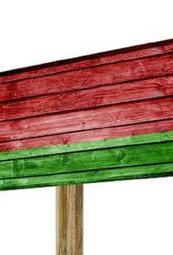 Госатомнадзор Белоруссии ответил на призыв Европарламента приостановить запуск БелАЭС