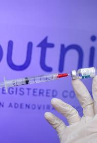 В Нидерландах оценили возможность приобретения российской вакцины «Спутник V»