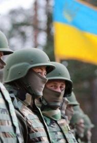 Украина неровным «новым» строевым шагом уверенно идет в НАТО