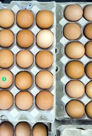 В российских магазинах подорожают яйца и мясо птицы. О подорожании узнали в торговых сетях